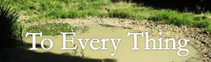 To-Every-Thing
